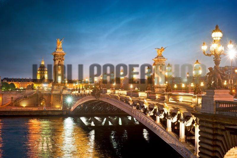Alexandre 3 Bridge Paris No 11123