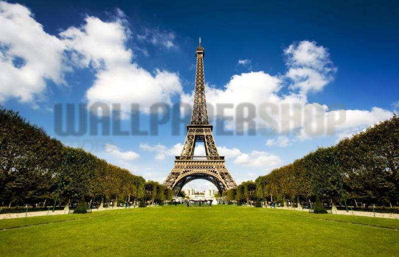 Digital Walls Eiffel Tower No 5457