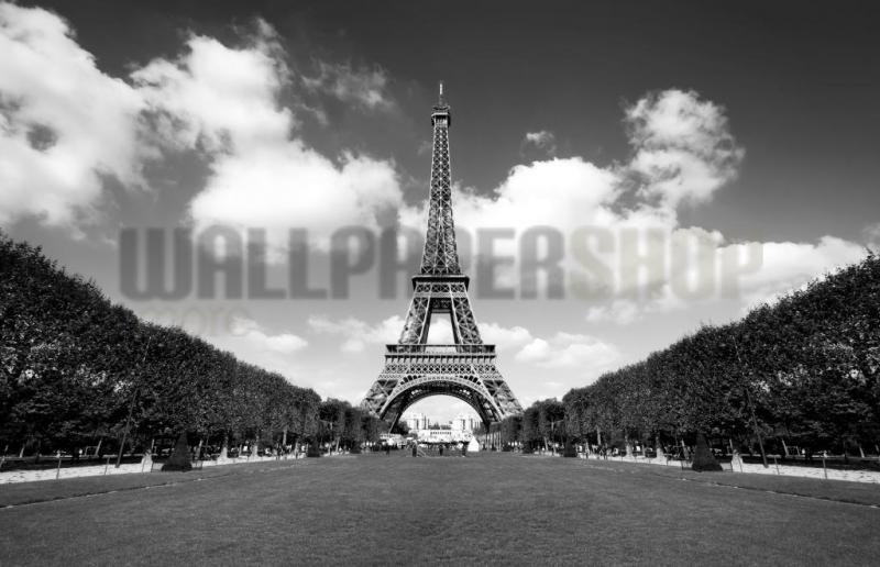 Digital Walls Eiffel Tower No 5456
