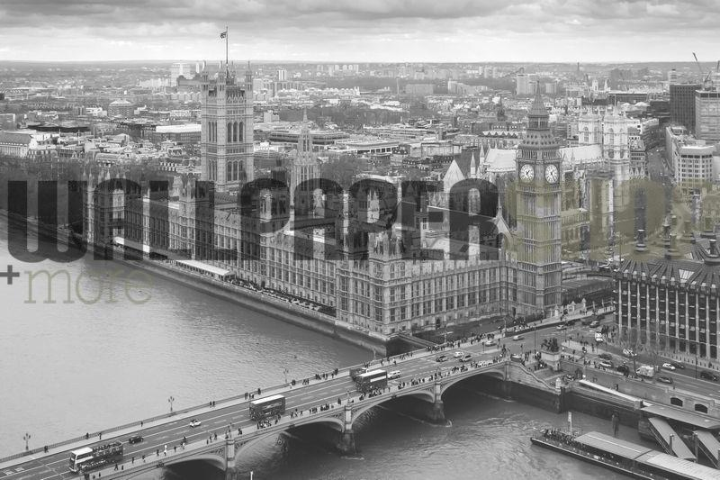 Aerial View Of The Houses Of Parliament No 18550