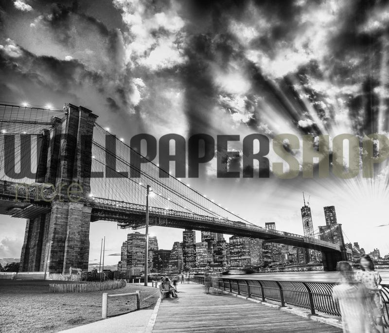 Brooklyn Bridge Park No 18889