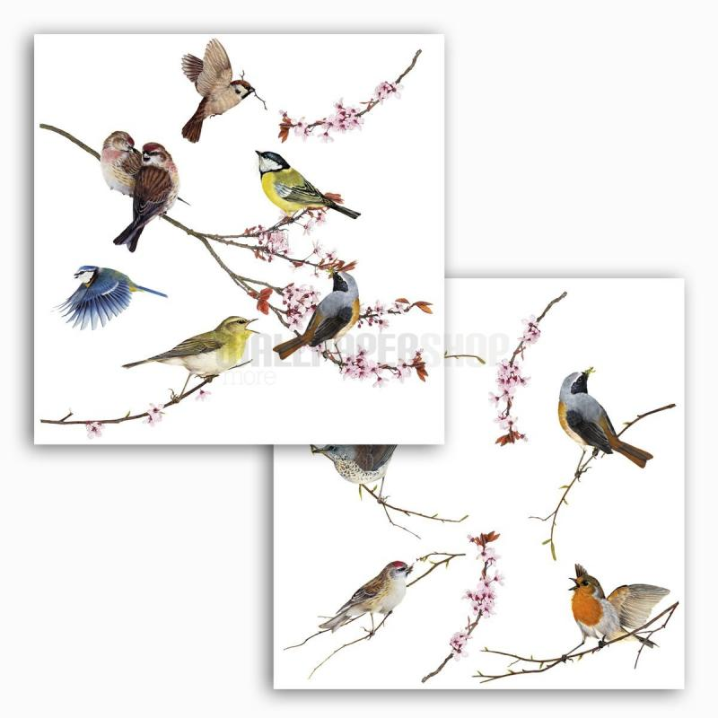 Birds Window Sticker No 31092
