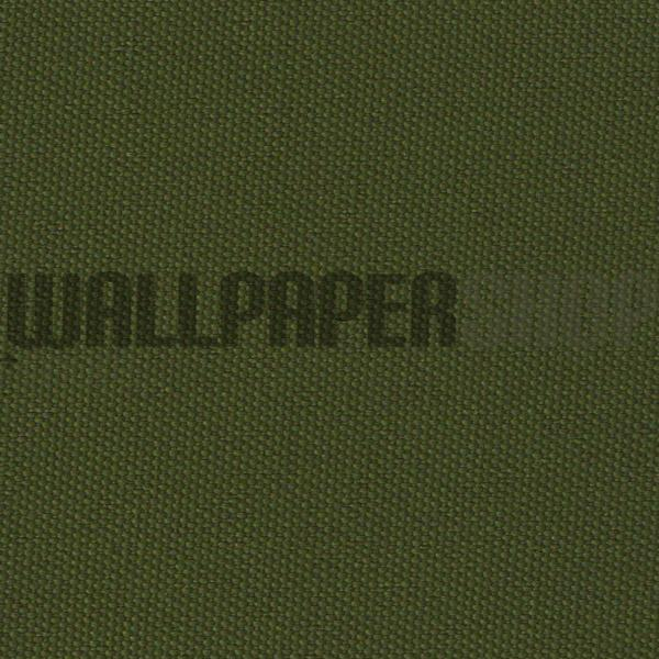 Plain Roller Dark Green No 29625